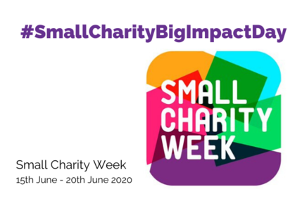 Small Charity Big Impact Day 6 x 4